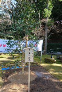 第44回造園感謝祭に初参加 – 岡本庭園
